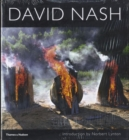 Image for David Nash