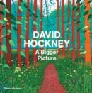 Image for David Hockney - a bigger picture