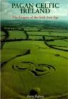 Image for Pagan Celtic Ireland  : the enigma of the Irish Iron Age