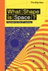 Image for What shape is space?  : a primer for the 21st century
