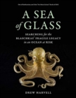 Image for A Sea of Glass : Searching for the Blaschkas' Fragile Legacy in an Ocean at Risk