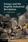 Image for Energy and the English industrial revolution