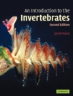 Image for Introduction to the invertebrates