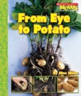 Image for From Eye to Potato (Scholastic News Nonfiction Readers: How Things Grow)