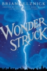 Image for Wonderstruck  : a novel in words and pictures