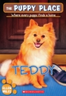 Image for The Teddy (The Puppy Place #28)