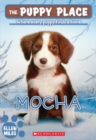 Image for The Mocha (The Puppy Place #29)