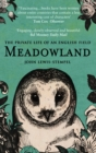 Image for Meadowland  : the private life of an English field