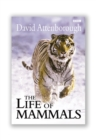 Image for The life of mammals