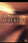 Image for Death and the afterlife in the New Testament
