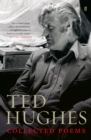 Image for Ted Hughes  : collected poems