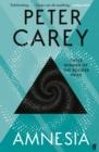 Image for Amnesia