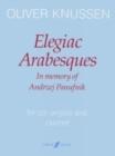Image for Elegiac Arabesques