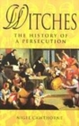 Image for Witch hunt  : history of a persecution