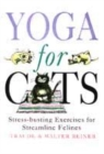 Image for Yoga for cats