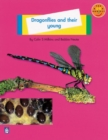 Image for Dragonflies and Their Young: Animals Small Book 1