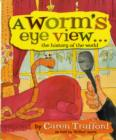 Image for A worm's eye view-  : the history of the world