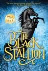 Image for The black stallion