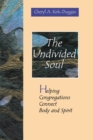 Image for Undivided Soul