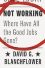 Image for Not working  : where have all the good jobs gone?