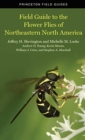 Image for Field Guide to the Flower Flies of Northeastern North America