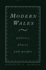 Image for Modern Wales : Politics, Places and People