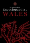Image for The Welsh Academy encyclopaedia of Wales