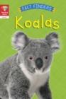 Image for Koalas