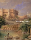 Image for Picturing India