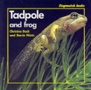 Image for Tadpole and Frog