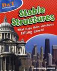 Image for Stable structures