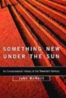 Image for Something new under the sun  : an environmental history of the twentieth-century world