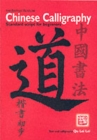 Image for Chinese calligraphy  : standard script for beginners