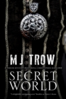 Image for Secret world