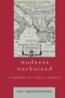 Image for Madness Unchained : A Reading of Virgil's Aeneid