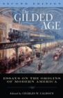 Image for The Gilded Age: Perspectives on the Origins of Modern America