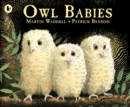 Image for Owl Babies