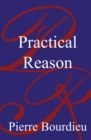 Image for Practical reason  : on the theory of action