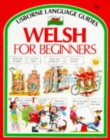 Image for Welsh for beginners