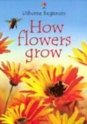 Image for How flowers grow