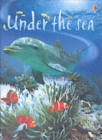 Image for Under the sea