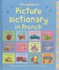 Image for The Usborne picture dictionary in French