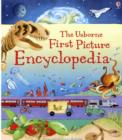 Image for The Usborne first picture encyclopedia