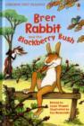 Image for Brer Rabbit and the blackberry bush
