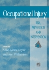 Image for Occupational injury  : risk, prevention and intervention