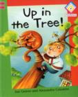 Image for Up in the tree!