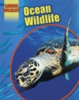 Image for Ocean animals