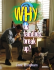 Image for Why do families break up?