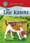 Image for The lost kittens