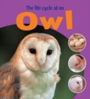 Image for The life cycle of an owl